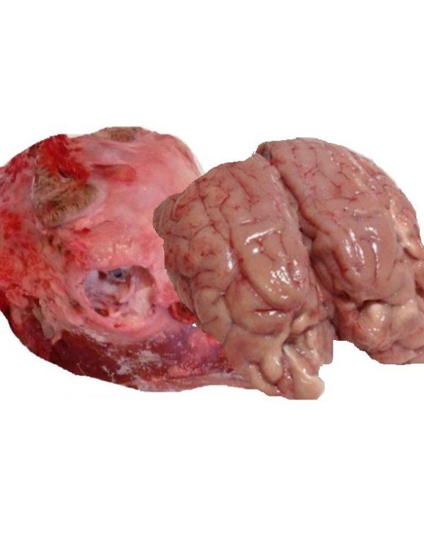 Goat-Lamm-Brain-Kopfe-Gulabjamun_Tukwila Online Store in Germany
