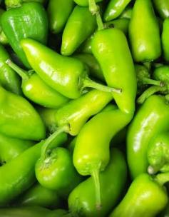 Bullet Green Chilli, Grünes Chilli, bombay Morich-Tukwila online Market-Germany