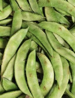 Fresh Papdi, Green Beans, Indian-Bengali sim, Bohnen-1-Tukwila online Market-Germany