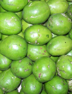Amra-Ambada-Golden Apples Hog Plums Spanish Plums-3-Tukwila online Market in Germany