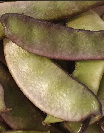 Bengali Sim Seem Bohnen, Green Beans, Papri-3-Tukwila online Market in Germany